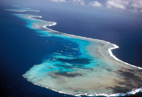 Australias_coral_reefs